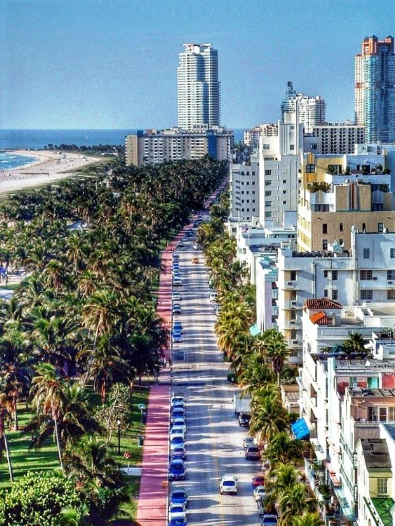 Miami-10 Best Places To Visit In Florida This Year